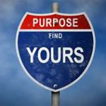 traffic sign: purpose/find yours