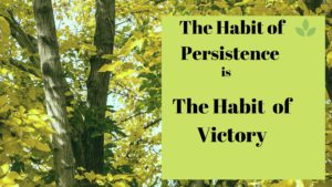 The habit of persistence is the habit of victory