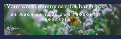Quote: Your worst enemy cannot harm you as much as your own thoughts, unguarded