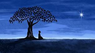 Night sky; person meditating under tree (silhouette)