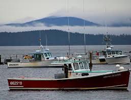 lobster boats at anchor