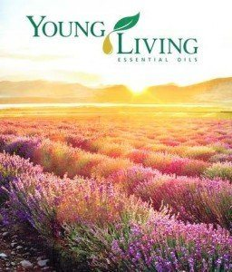 Young Living logo + field of lavender